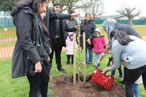 Southall Orchard Project